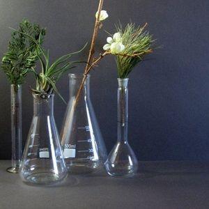 Set of Pyrex Lab Glass Beakers